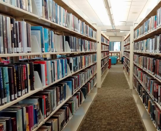 Biblioteka Rybnik: Wykład dra Jacka Kurka
