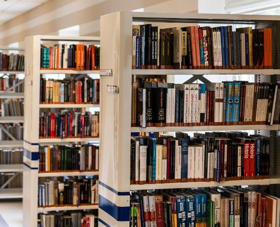Biblioteka Rybnik: Academica – pół miliona publikacji dla Was